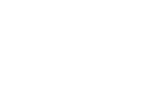 Corporate Information Services logo